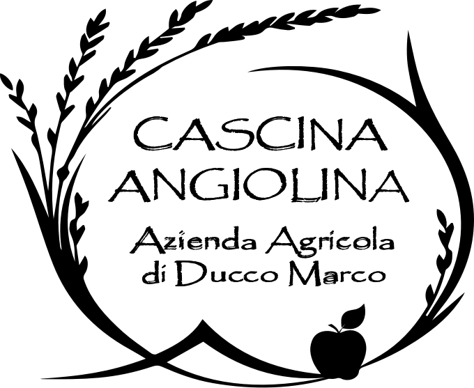 logox680B